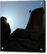 Climbing In Joshua Tree Acrylic Print