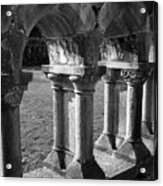 Cloister At Cong Abbey Cong Ireland Acrylic Print
