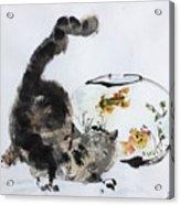Close Encounter Acrylic Print