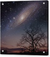 Close Encounters - Andromeda Acrylic Print
