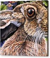 Close Up Detail From Painting Celibration Acrylic Print
