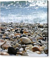 Close Up From A Beach Acrylic Print