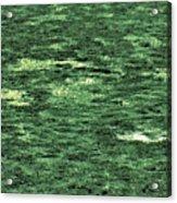 Close-up Of Scum Pong Acrylic Print