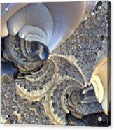 Close-up Texture Acrylic Print
