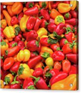 Close Up View Of Small Bell Peppers Of Various Colors Acrylic Print