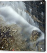 Closeup Maple Leaf And Decew Falls, St Acrylic Print by Darwin Wiggett