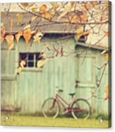 Closeup Of Leaves With Old Barn In Background Acrylic Print