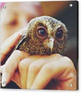 Closeup Portrait Of A Girl Holding And Tending A Small Baby Owl In Her Hands Acrylic Print