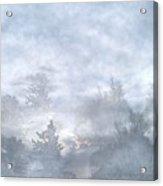 Cloud Walk Forest Acrylic Print
