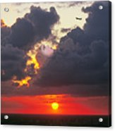 Cloud Woofie Acrylic Print