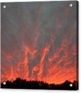Clouds 64 Acrylic Print