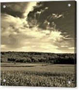 Clouds And Cornfields Acrylic Print