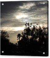 Clouds And Silhouetted Trees Acrylic Print