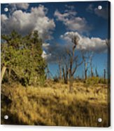 Clouds Over Mesa Verde Acrylic Print