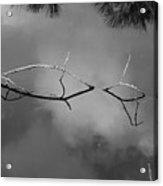 Cloudy Bridge Acrylic Print