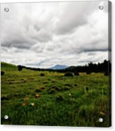 Cloudy Meadow Acrylic Print
