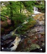 Cloughleagh Wood, Kilbride, Ireland Acrylic Print