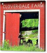 Clover Dale Farm Acrylic Print