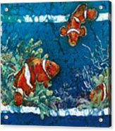 Clowning Around - Clownfish Acrylic Print