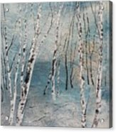 Cluster Of Birches Acrylic Print