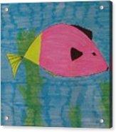 Clyde Acrylic Print