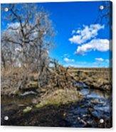 Coal Creek Acrylic Print