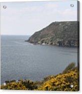 Coastal Path Cornwall Acrylic Print