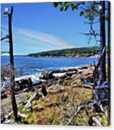 Coastline At Otter Point 1 Acrylic Print