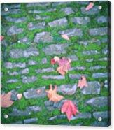 Cobblestone Path Acrylic Print