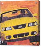 Cobra Mustang Acrylic Print
