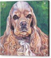 Cocker Spaniel Acrylic Print