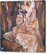 Cocker Spaniel On Chair Acrylic Print