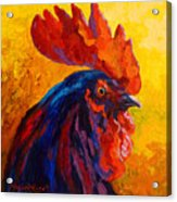 Cocky - Rooster Acrylic Print