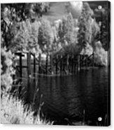 Cocolala Creek Slough Acrylic Print