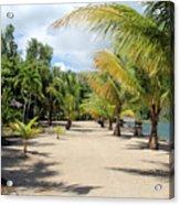 Coconut Beach Acrylic Print