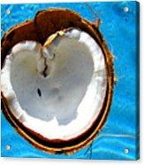 Coconut Heart Acrylic Print