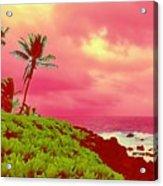 Coconut Palm Makai For Pele Acrylic Print