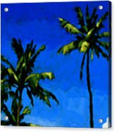 Coconut Palms 5 Acrylic Print
