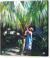 Coconut Shade Acrylic Print
