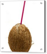 Coconut With A Straw Acrylic Print
