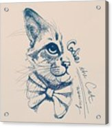Codie, Wearing A Bow Tie Acrylic Print