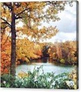 Coe Lake Fall Series 1a Acrylic Print