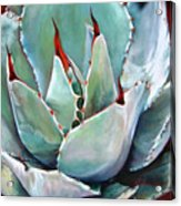 Coeur Piquant Acrylic Print