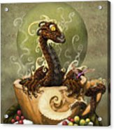 Coffee Dragon Acrylic Print