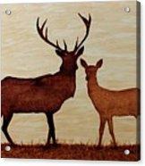 Coffee Painting Deer Love Acrylic Print