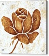 Coffee Painting Rose Blooming Acrylic Print
