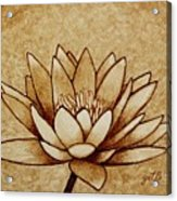 Coffee Painting Water Lilly Blooming Acrylic Print
