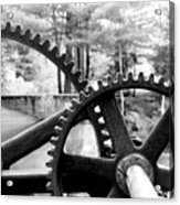Cogs Acrylic Print by Greg Fortier