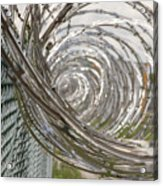 Coiled Razor Wire On Fence Acrylic Print