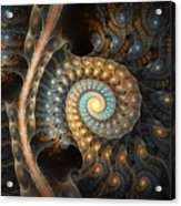 Coiled Spirals Acrylic Print